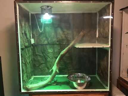 Large snake enclosure