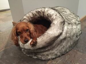 T&S Pet Products - Deluxe Fur Igloo Dog or Cat bed NEW Croydon North Maroondah Area Preview