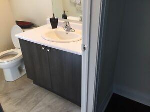 Like New Bathroom Vanity, Moen Faucet, American Standard Sink