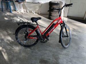 Vélo Électrique ebgo