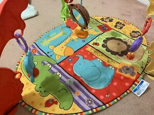 Fisher Price play mat - price reduced