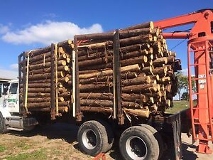 Wanted ! Posts and logs Peterborough Peterborough Area image 1