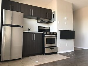 Beautiful bachelor in Hintonburg available now