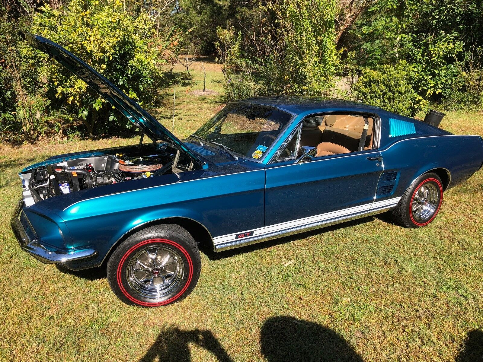 1967 Ford Mustang GT REAL 1967 GT Mustang Fastback A code 4-speed