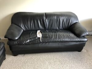 Comfy Blue Couch Couches Futons