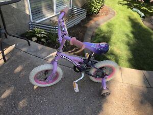 "12"" bike with training wheels"