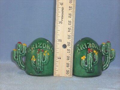 ARIZONA Flowering Cactus Souvenir Salt and Pepper Shakers Cactus Handles