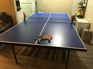 Table tennis (ping pong table)