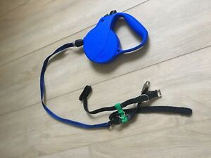 Brand new small puppy or cat leash and halter
