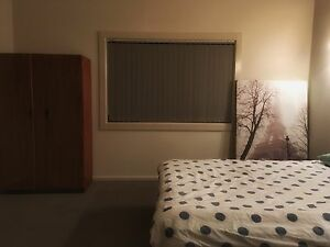 Housemate wanted Lidcombe Auburn Area Preview