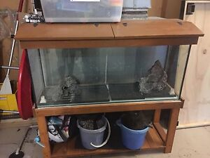 Fish tank complete setup Nowra Nowra-Bomaderry Preview