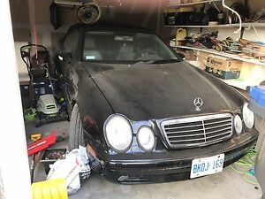 Mercedes for sale 2003 CLK 430 Black