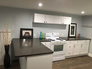All Inclusive, Newly Renovated 1 Bedroom Basement Apartment