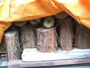 FIREWOOD - Central BLI BLI $7 or 3 for $20 Bli Bli Maroochydore Area Preview
