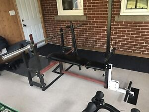 Thanksgiving recovery, northern lights gym set