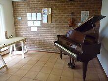 Private Piano/Music Tuition Perth Perth Region Preview