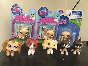 Littlest Pet Shop Launceston Launceston Area Preview