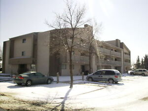 SPACIOUS 3 BEDROOM CONDO IN LAKEVIEW AREA !