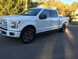 2016 Ford  xlt.  Super crew MINT condition