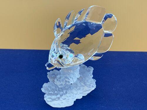 Swarovski Figurine 077000 Butterfly Fish 3 5/16in Top Conditino
