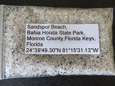 Florida Sandspur Beach Bahia Honda SP Florida Keys Sand Sample