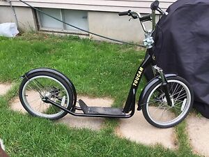 Trotinette chien - dog scooter