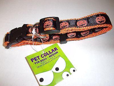 PUMPKIN Dog Collar Halloween Costume Pet S new puppy small](Pumpkin Dog Costumes)