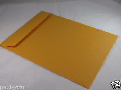 10 Manila 9 X 12 Kraft Catalog Mailing Envelopes Brown Self Seal Mailers 9x12