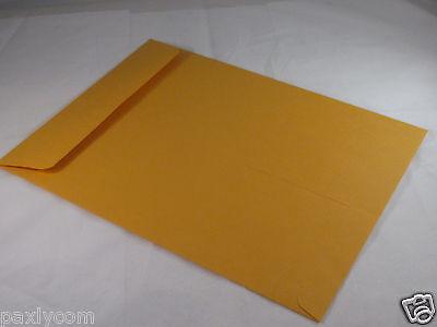 10 Manila 9 X 12 Kraft Catalog Mailing Envelopes Brown Self Seal Mailers 9x12