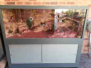 SNAKE TANK/TERRARIUM FOR SALR Lynbrook Casey Area Preview