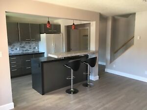 2 Bedroom Condo For Rent