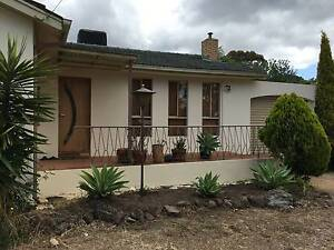 RENDERING NO JOB TOO BIG OR SMALL FREE QUOTE ALL AREAS Doncaster Manningham Area Preview