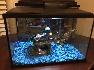 5.5 gallons aquarium for sale