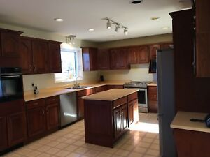 Kitchen cabinets, countertops, sink&taps,island