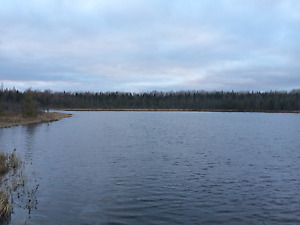 150 acres with 7-8 acre pond