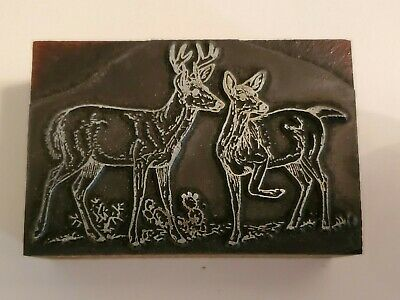 Letterpress Printing Press Block Buck And Doe Deer Nature Scene