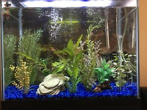 25 gallon aquarium with stand (complete package)