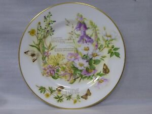 Caverswall China 'The Country Diary of an Edwardian Lady' 11