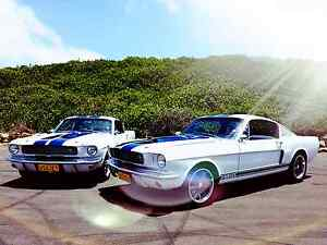 Mustang Wedding Car Hire Sydney City Inner Sydney Preview