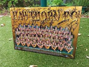 1997 Hand signed full team AFL Hawthorn FBC Poster Mounted