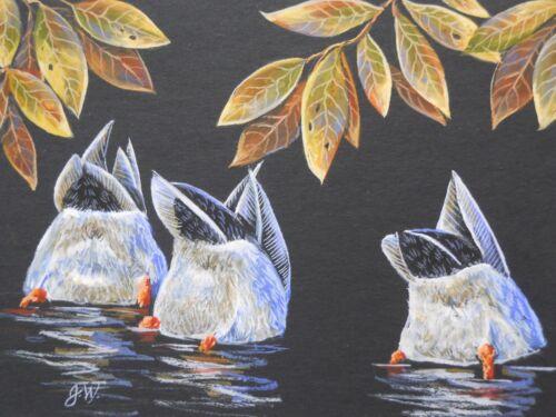 ACEO Original Mallards Ducks Bird Wildlife Fall Landscape