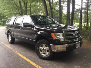2013 Ford F-150 XLT 5.0 L V8 4X4 Supercrew
