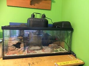 Gently used 20 gallon reptile terrarium with extras