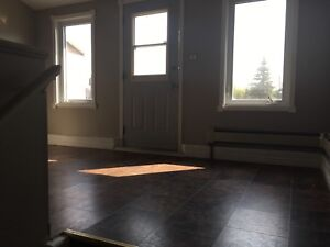 1 bed room newly renovated apartment