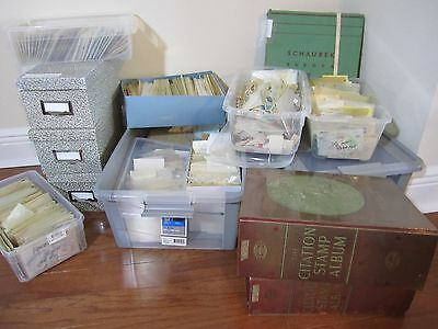 Collection ,better from dealer cards,albums,many sets ,stock books ,all differ