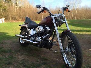 2009 Harley Davidson Softail Custom