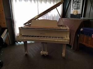 Yamaha G1-J Grand Piano Tamborine Mountain Ipswich South Preview