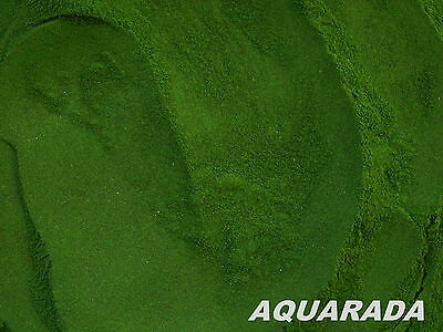 Reines Spirulina Pulver 25g Aufzuchtfutter Fischfutter Garnelenfutter Aquarium