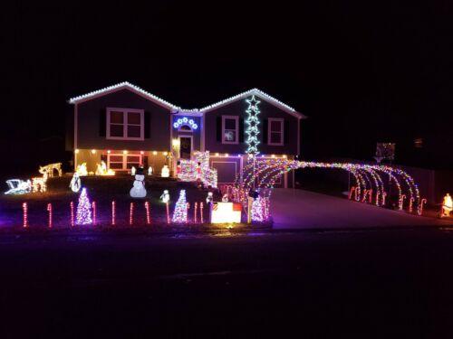 NEW Light O Rama Sequences LightORama Christmas Light Show Pick