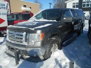 Ford F-150 2010 Gris